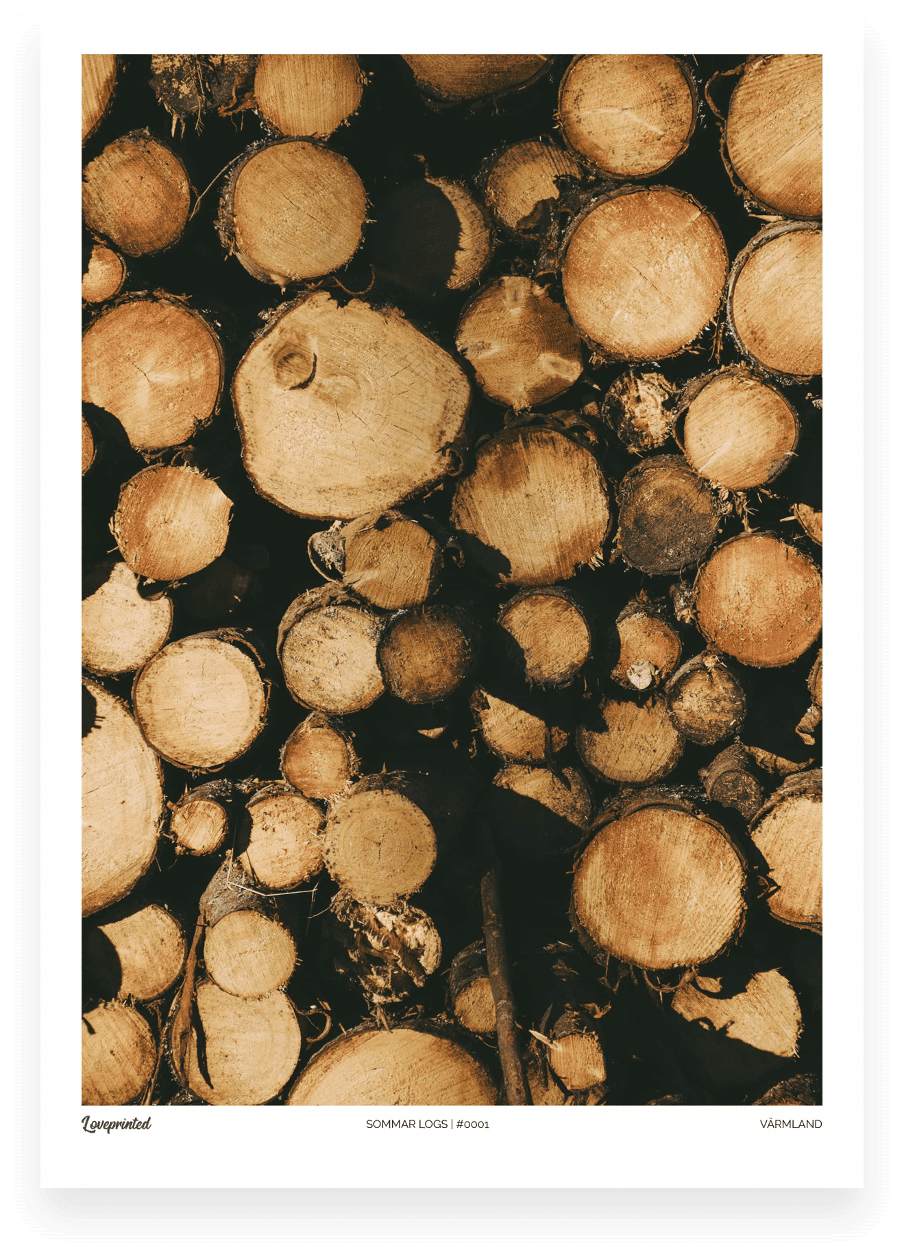 Sommar logs | A closeup Image of a pile of logs in the Swedish Forest made by Loveprinted