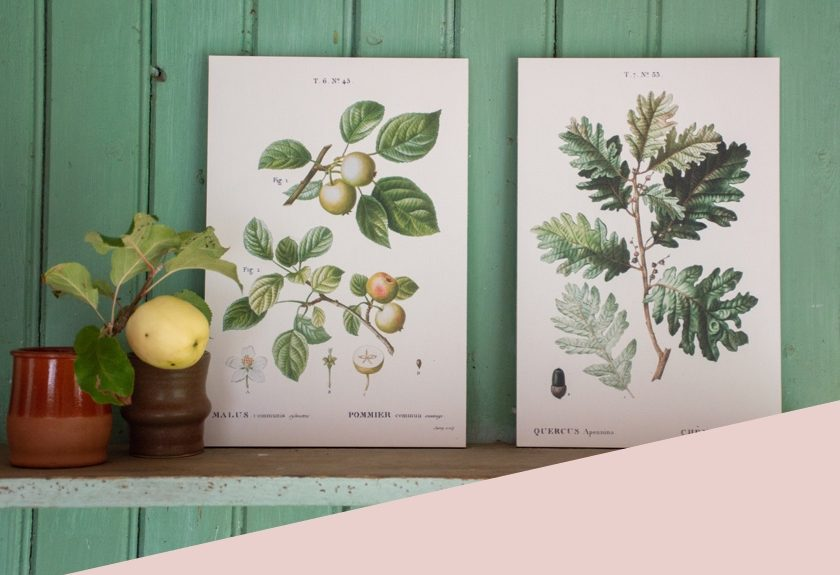Print op hout category 2